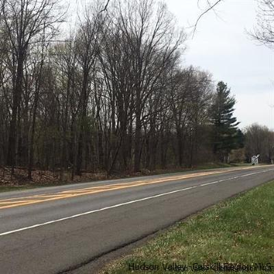Residential Lots & Land For Sale: 197 State Route 299