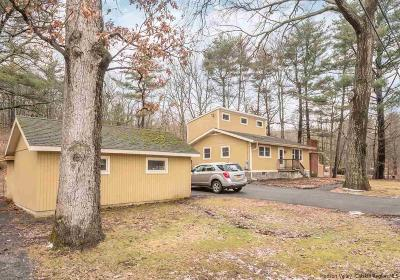 Saugerties Single Family Home For Sale: 63 Mount Airy Road