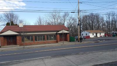 Commercial For Sale: 137-143 Broadway Route 9w