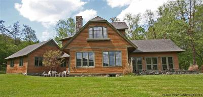 Delaware County Single Family Home For Sale: 27 Big Pond Road