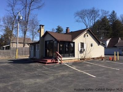 Accord Commercial For Sale: 4629 Route 209