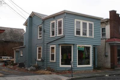 Saugerties Commercial For Sale: 190 Main St.