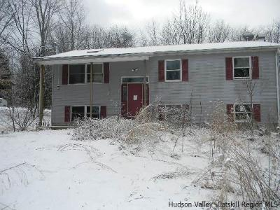 New Paltz Single Family Home For Sale: 289 Hurds Road