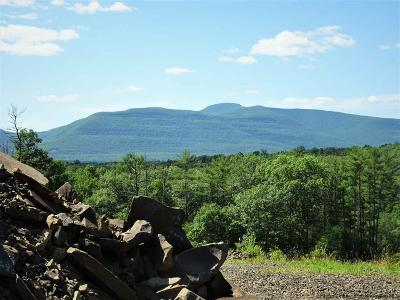 Saugerties Residential Lots & Land For Sale: Rte 212 Road