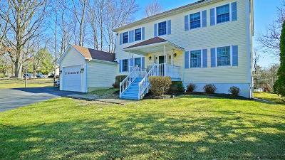 Saugerties Single Family Home For Sale: 29 Emerick Road