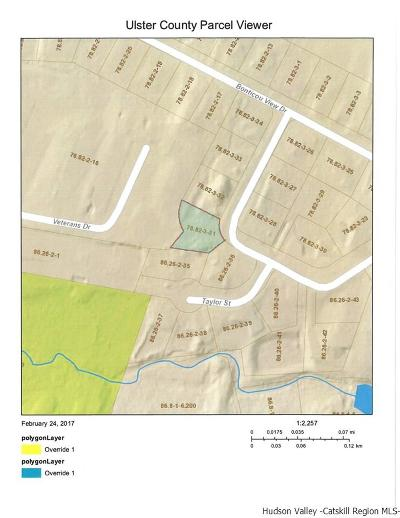New Paltz Residential Lots & Land For Sale: 10 Cooper Street