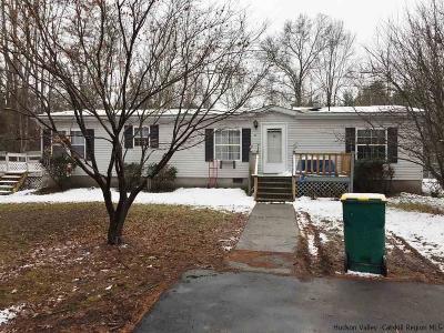 Saugerties Single Family Home For Sale: 50 Buck Lane
