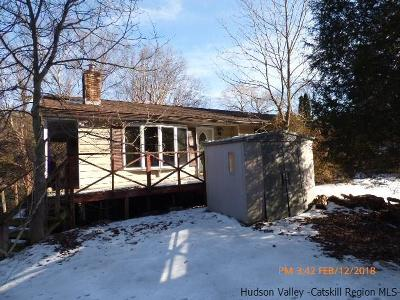 Saugerties Single Family Home For Sale: 153 Esopus Creek Road