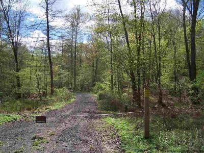 New Paltz Residential Lots & Land For Sale: 450 Martin Sweedish Road