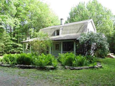Saugerties Single Family Home For Sale: 27 Cole Bank Road