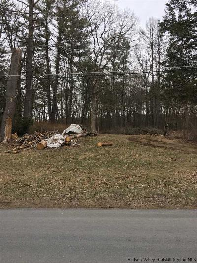 Saugerties Residential Lots & Land For Sale: 8 Cedarwood Ln