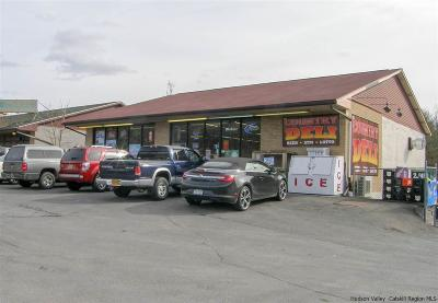 Kingston Commercial For Sale: 932 Route 28