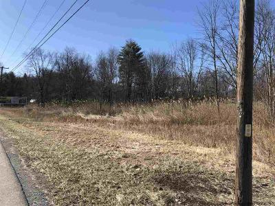 Commercial Lots & Land For Sale: 116 Ulster Ave