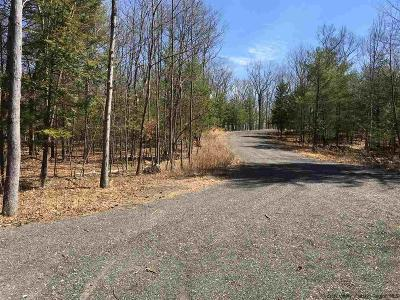 Saugerties Residential Lots & Land For Sale: Lot#3 Darlene's Way