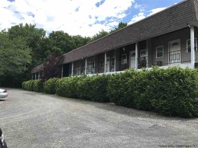 Catskill Multi Family Home For Sale: 5365 Route 32