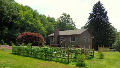 Shandaken Single Family Home For Sale: 451 Old Route 42 Route