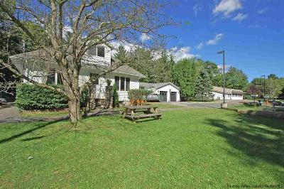 Saugerties Single Family Home For Sale: 268 W Saugerties Road