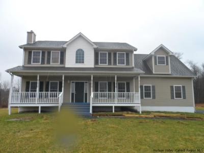 Wallkill Single Family Home For Sale: 350 Bruyn Turnpike