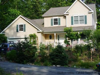 New Paltz NY Single Family Home For Sale: $429,900