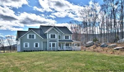 New Paltz NY Single Family Home For Sale: $650,000
