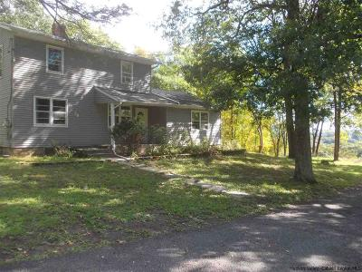 Saugerties Single Family Home For Sale: 58 Finger Hill Road