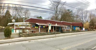 Woodstock NY Commercial For Sale: $1,595,000