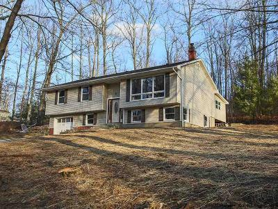 Pine Bush Single Family Home For Sale: 73 Lake Shore Drive