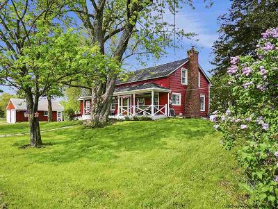 Saugerties Single Family Home For Sale: 163 Malden Turnpike