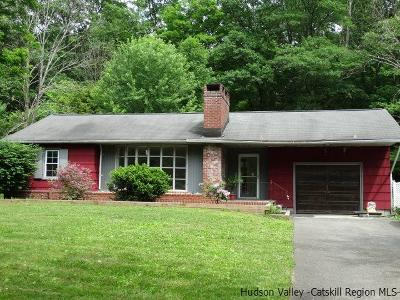 Saugerties Single Family Home For Sale: 29 Eddy Street