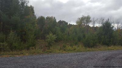 Saugerties Residential Lots & Land For Sale: Hudson River Road
