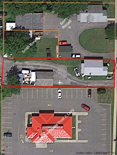 Greene County Commercial For Sale: 77 Maple (Rt. 9w) Avenue