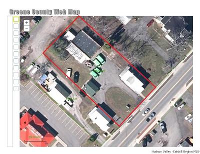 Greene County Commercial For Sale: 79 Maple (Rt. 9w) Avenue