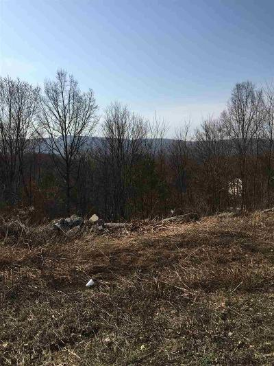 New Paltz Residential Lots & Land For Sale: 91 S Chestnut Street