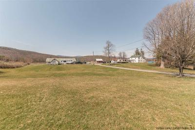 Saugerties Single Family Home For Sale: 1071 Kings Highway