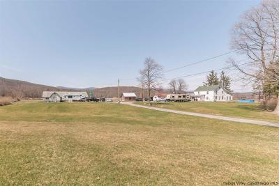 Saugerties Multi Family Home For Sale: 1071 Kings Highway
