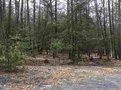 Saugerties Residential Lots & Land For Sale: Lot 5 Laura Lane
