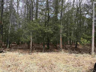 Saugerties Residential Lots & Land For Sale: Lot 6 Laura Lane
