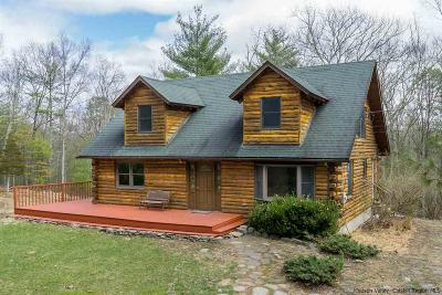 Kingston Single Family Home For Sale: 852 Ashokan Road