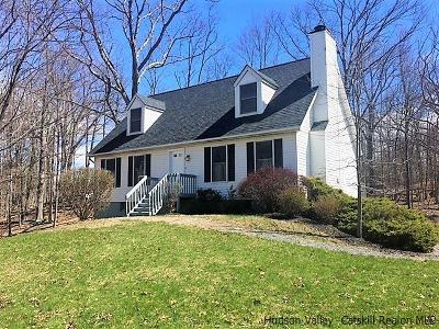 New Paltz Single Family Home For Sale: 33 Bonticou View Drive