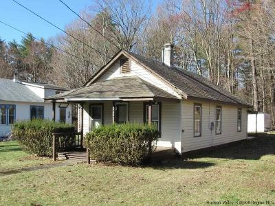 Saugerties Single Family Home For Sale: 345 W Saugerties Road