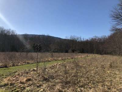 Orange County, Sullivan County, Ulster County Residential Lots & Land For Sale: Bruynswick Road