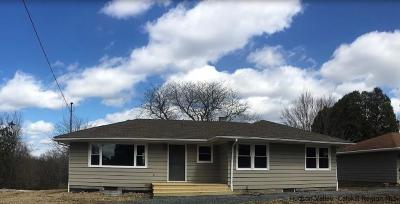 New Paltz Single Family Home For Sale: 1030 Old Ford Road