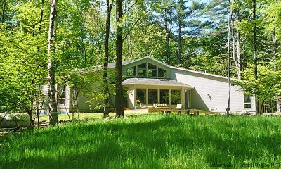 Bearsville NY Single Family Home For Sale: $675,000
