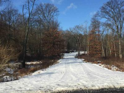 New Paltz Residential Lots & Land Accepted Offer Cts: 167-1 Springtown Road
