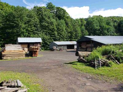 Delaware County Commercial For Sale: 1289 South Side Road