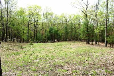 Saugerties Residential Lots & Land For Sale: 76 Morse Rd