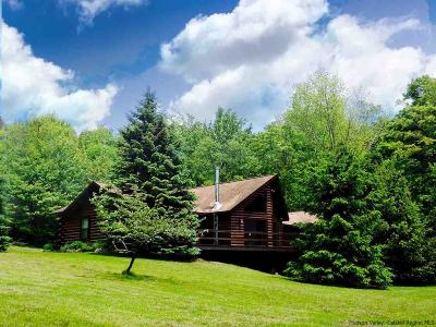 Delaware County Single Family Home For Sale: Beaver Road