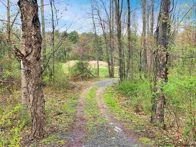 Woodstock Residential Lots & Land For Sale: 3664 Route 212