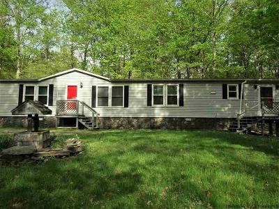 Saugerties Single Family Home For Sale: 22 Echo Hill Road