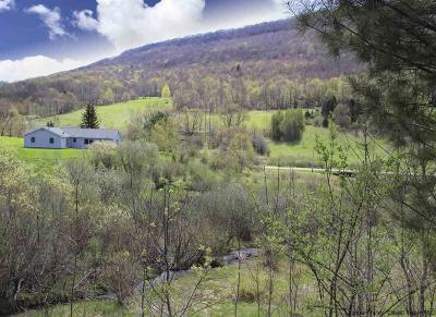Delaware County Single Family Home For Sale: 703 Narrow Notch Road